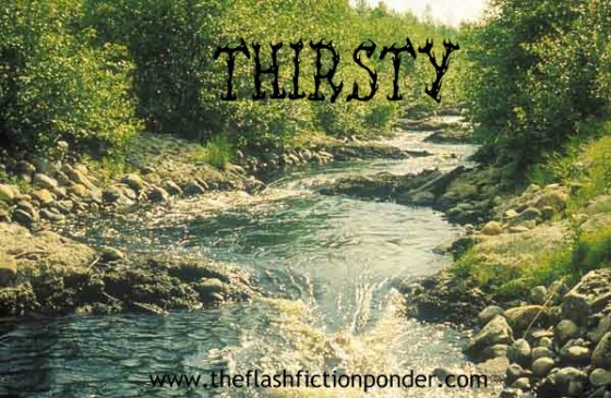 A beautiful stream in the wilderness. The setting for the short story Thirsty, about the origins of a young serial killer.