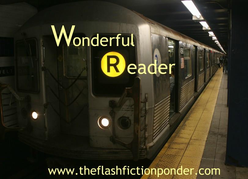 Wonderful Reader Cover