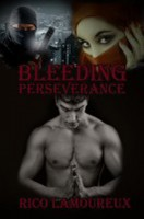A modern ninja and a Muslim girl, book cover for Bleeding Perseverance.