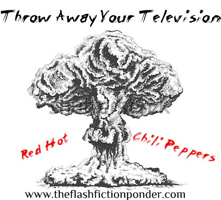Throw Away Your Television Cover