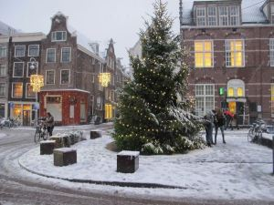 Christmas tree in town square.
