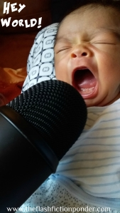 Baby shouts into microphone. Journey Teller Lamoureux for The Flash Fiction Ponder.