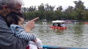 Father shows son lake.